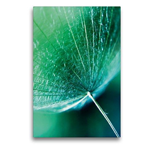 Premium Textil-Leinwand 50 x 75 cm Hoch-Format kleiner Schirm | Wandbild, HD-Bild auf Keilrahmen, Fertigbild auf hochwertigem Vlies, Leinwanddruck von Christine Bässler