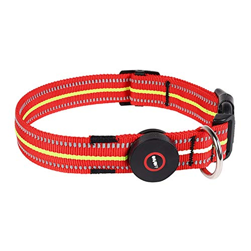 TWQ Collar LED para mascotas, collar luminoso para perro para caminar por la noche, collar reflectante impermeable rojo M