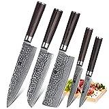 XINZUO 5-Piece Damascus Kitchen Knife Set Japanese Steel, Nakiri Knife Slicing Hammered Forging...