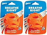 (2 Pack) Chuckit! Breathe Right Fetch Ball (Large)