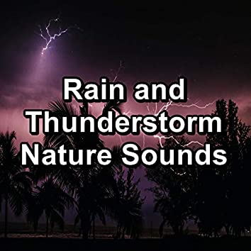 Rain and Thunderstorm Nature Sounds