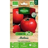 bolsa de semillas Tomate Matina Orgánico Vilmorin