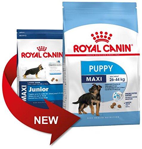 Royal Canin MAXI JUNIOR - Comida para perros (15 kg)