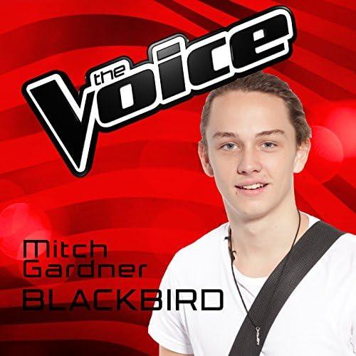 Mitch Gardner