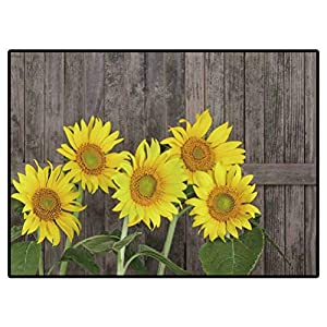 Area Rug for Bedroom Sunflower, Helianthus Annuus, Against A Weathered Fence Super Soft Kids Girls Room Nursery Rug 6.6 X 10 Ft