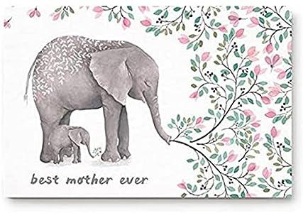 Felpudos para puerta de entrada, mejor madre jamás flores elefante madre e niño, dormitorio, cocina, entrada, tapete utilitario, perfil bajo antideslizante (45 x 70 cm)
