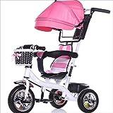 Strollers DD Bicicleta de bebé Bicicleta Infantil de 8 Meses en Bicicleta - 6 años, con toldo, neumático de Goma Completo Triciclo Bebe (Color : 11)