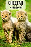 Cheetah Notebook: Journal / Diary, Unique Gift For Animal Lovers (Lined, 6' x 9')