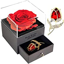 SWEETIME Red Rose Gift Box Enchanted Real Rose with Ruby Rose Brooch, Eternal Rose Flower in Jewelry Box, Handmade Preserv...