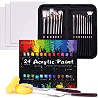 48-Piece Cool Bank Professional Painting Supplies Set with Case
