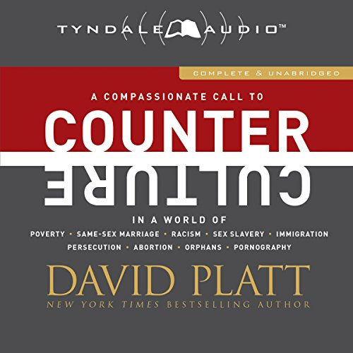 Counter Culture audiobook cover art