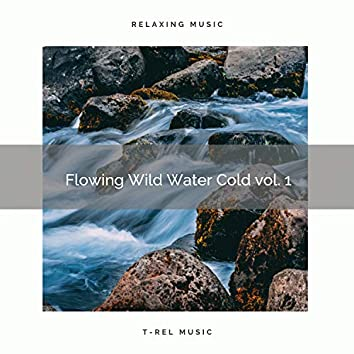 2021 New: Flowing Wild Water Cold