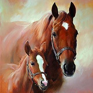 20Servilletas caballo potro Horse foal Granja Yegua Caballos Familia 33x 33cm