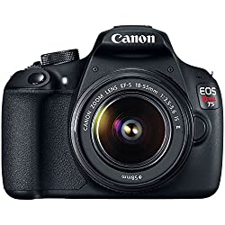 Canon EOS Digital Rebel is the best dslr under 300