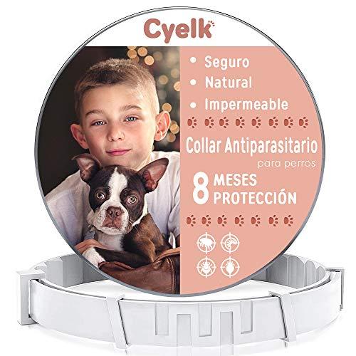 Cyelk Collar Antiparasitos Perro, contra Garrapatas y Pulgas, Collar Antipulgas Perro Natural Hipoalergénicos para Mascota Pequeño Mediano Grande