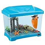Ferplast 65010025 Aquarium CAPRI JUNIOR, Maße: 41 x 26,5 x 34 cm, 21 Liter, blau