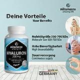 Zoom IMG-1 vitamaze acido ialuronico puro ad