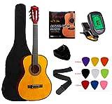 12 Strings Acoustic Guitars
