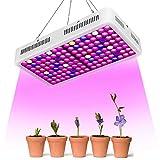 Roleadro LED Pflanzenlampe 1000W Full Spectrum Dual-Chip, mit Daisy Chain, für Hydroponic Veg und Flower LED Grow Light