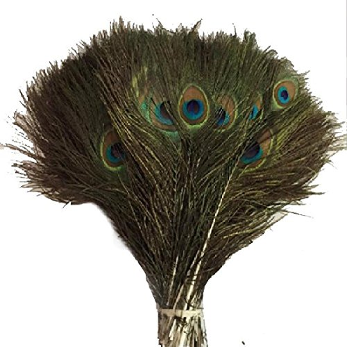 10pcs Nat ¨ ¹ rliche plume de paon 25–30 cm décoration, vêtements, mode Sch ? ne Crafts Plumage décoratifs
