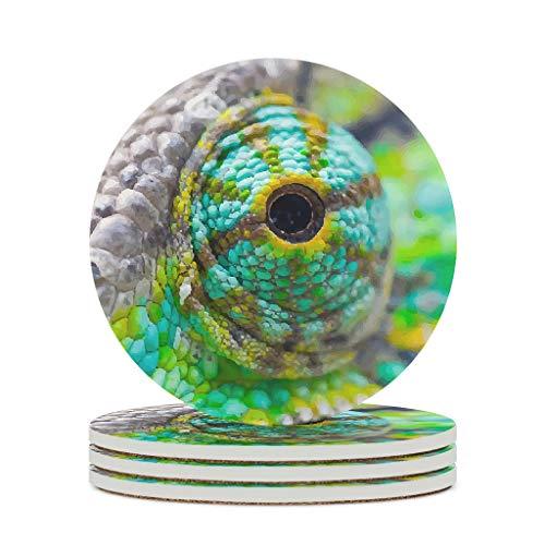 O5KFD&8 Posavasos de cerámica con ojos de camaleón, de primera calidad, retro, bonitos para la oficina, regalo de cumpleaños, color blanco, 6 unidades