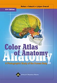 Color Atlas of Anatomy: A Photographic Study of the Human Body (Color Atlas of Anatomy (Rohen))