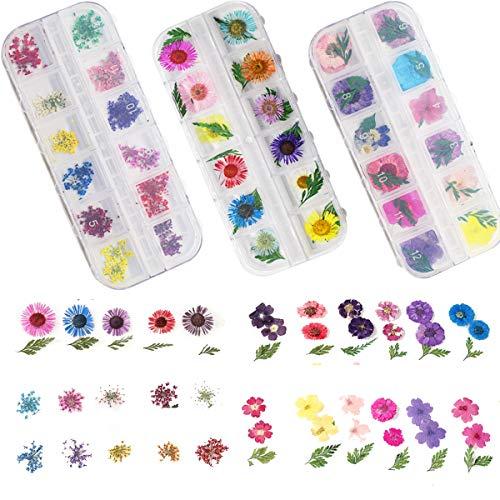 Osuter 36PCS Nail Art Fleur Séchée Set 3D Fleurs Séchées pour Résine Ongles Décoration DIY pour Accessoires de Beauté