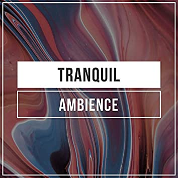 Tranquil Ambience, Vol. 24