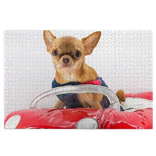 Rompecabezas para personas mayores disfraz Chihuahua perro rojo divertido coche Closeup animales vida silvestre 1000 piezas madera fcil rompecabezas para adultos