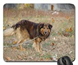 Gaming Mouse Pads,Mouse mat,Dog Collie Brown Standing Chain Outdoors Outside