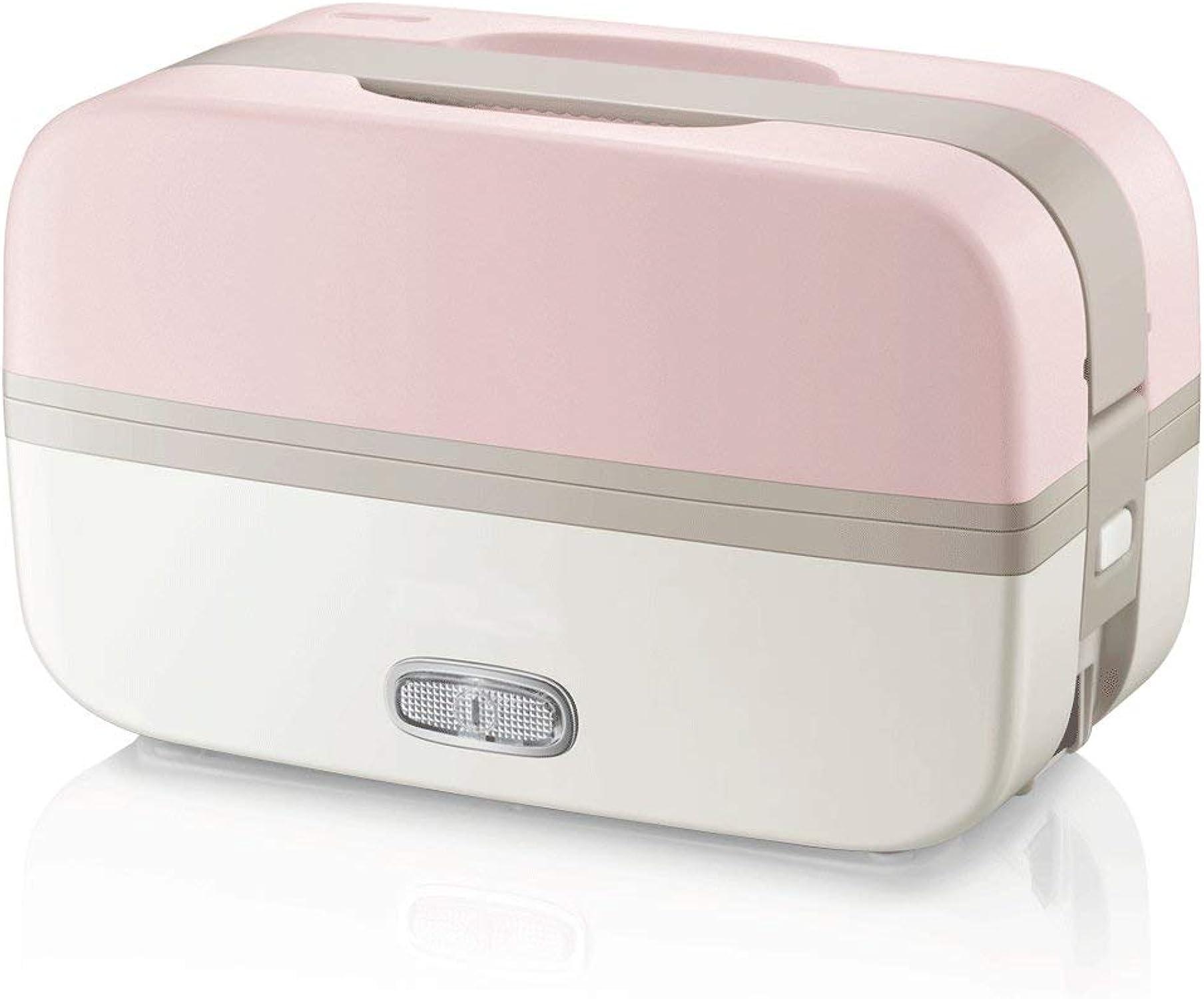 Calentador eléctrico eléctrico eficiente la caja del almuerzo la calefacción la comida portátil con 2 mini olla arrocera desmontable del acero inoxidable para el viaje, oficinista, estudiante, etc