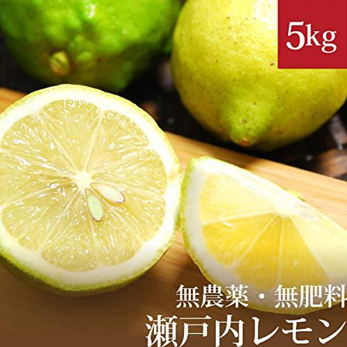 瀬戸内レモン 5kg 自然栽培(無農薬・無肥料) 広島県産 国産