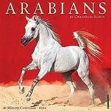 Arabian Horses 2022 Wall Calendar