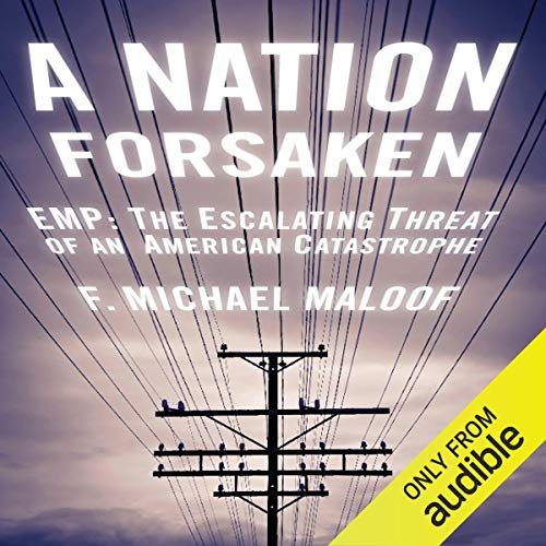 A Nation Forsaken audiobook cover art