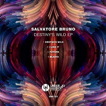 Destiny's Wild EP