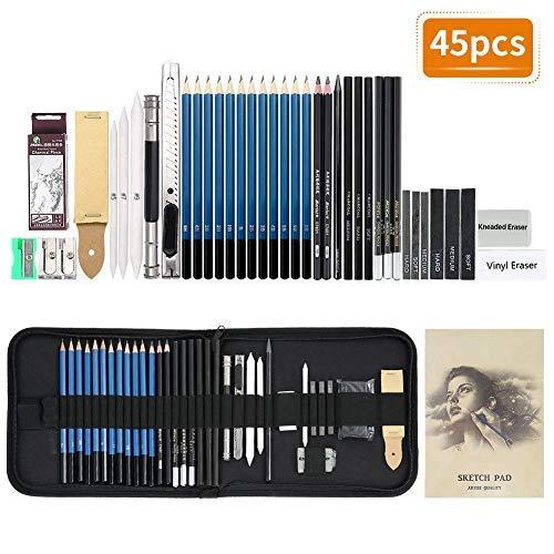 EBES Dibujo 45PCS Lápices de Dibujo del Artista y Bosquejo Material de dibujo Set Lápices Profesional Carbón Grafito Sticks para ArtistaPrincipiante Estudiante Niños y Adultos