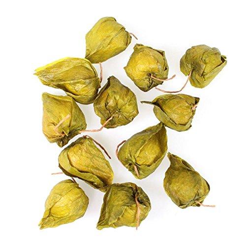 12 Physalis Lampion künstlich Kunstblume Länge ca. 3cm Deko Streudeko Herbst, Farbe:grün