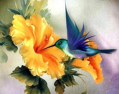 JIAOYK Malen nach Zahlen Erwachsene Kolibri, der Blütenstaub sammelt DIY Ölgemälde Zeichnung Bunte Leinwand mit Pinsel Dekor Dekorationen Geschenke-16 * 20Zoll Rahmenlos
