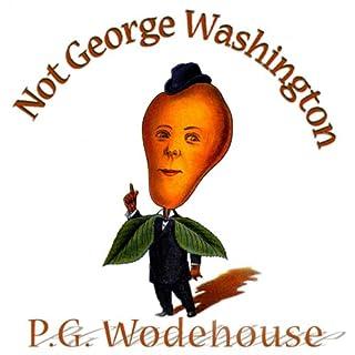 Not George Washington audiobook cover art