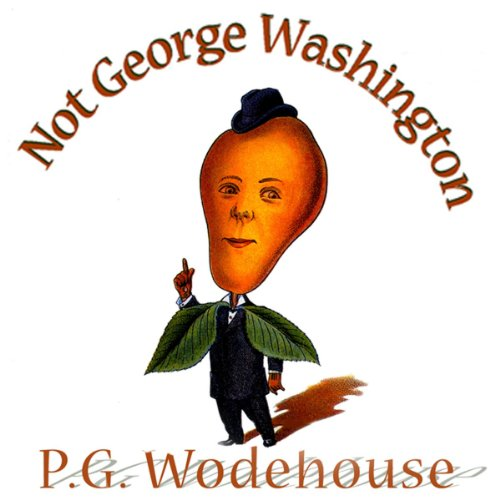 Not George Washington audiobook cover art
