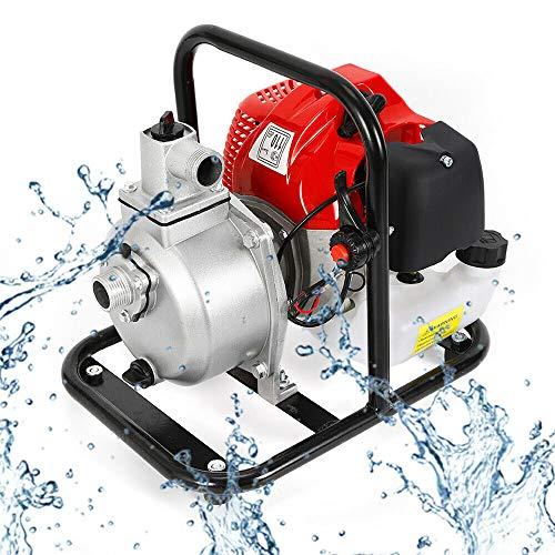 RANZIX - Bomba de agua para jardín (motor de gasolina, 43 c