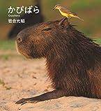 かぴばら (IWAGO'S BOOK 5)