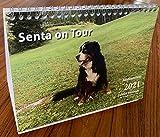 Senta on Tour 2021 Fotokalender DIN A5: Tischkalender DIN A5