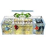 MLXG - Conjunto de acuario LED acrílico Betta para acuario con bomba de agua de escritorio y filtro de cuadruple