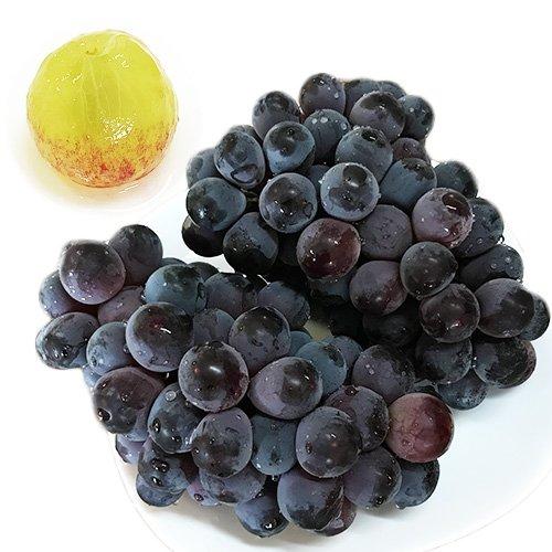 【 九州産 】 ニューベリーA 種無し葡萄  (箱込 約2kg前後 (4〜6房))
