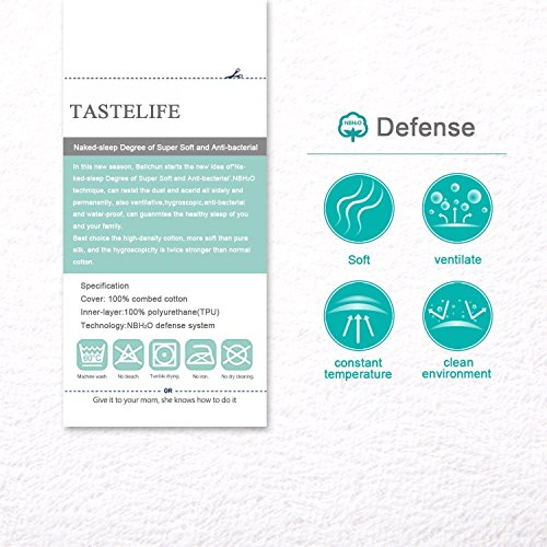 TASTELIFE Queen Waterproof Mattress Pad Protector Cover - Fitted 8 - 21 Deep Pocket - Hypoallergenic Vinyl Free