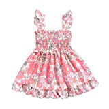 Infant Toddler Baby Girls Summer Dress Ruffles Strap Floral Dresses Elastic Beachwear Casual Outfits (18-24 Months, Pink)