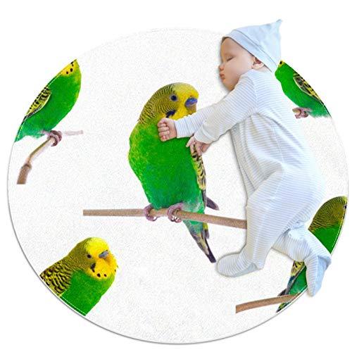 Parrots - Alfombra antideslizante para dormitorio (3,3 m)