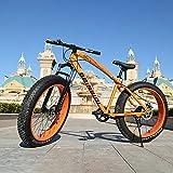 GAYBJ Snow Bike Beach Cruiser Fat Big Tyre Bicycle Double Shock Absorption Variable Speed Disc Brake Mountain...