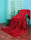 Sable Heated Blankets, 72'' x 84'' Full Size Electric Blanket Throws, Soft Flannel, Full Body Fast Heating, 10 Heat Levels, Auto-Off, ETL Certified, Overheating Protection, Machine Washable (Red)